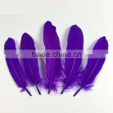 hot sell purple natural goose feather for sale