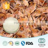 Hot sale New technology GMP OEM factory 100% natural Male Silk Moth Extract for man's health care,natural Male silk moth P.E