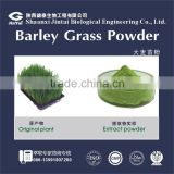 Natural Organic Barley Grass Juice Powder 100g/bag