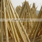 construction building material bamboo