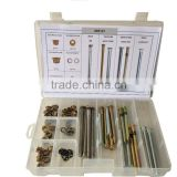 Replacement parts of auto door hinge pins and bushings assortment box set