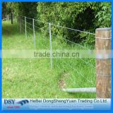double twist electro galvnaized barbed wire mesh fence for secuirty/16 gauge galvanized barbed wire for security wire mesh fence