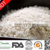 Organic Rice Protein Isolate
