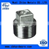 Round Shape and Cap Type Stainless Steel Bull Plug Square Plug Pipe Fitting Made in China