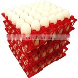 30 holes plastic egg tray for packing and transportation 30*30*5 cm plastic egg tray