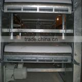 pp manure conveyor belts poultry farm