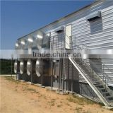 Professional design frame stock automatic poultry cage design for layer chicken farm
