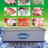 Seafood display-series solar electric refrigerator freezer /Convenience store freezer /Electric refrigerator