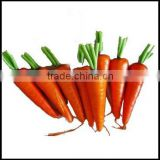 LOOK !!! 2011 BEST-SELLING artificial carrot vegetable
