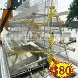 Whole Poultry farming equipment for chicken house