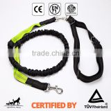 Retractable Hands Free Bungee Dog Running Leash                                                                         Quality Choice                                                     Most Popular