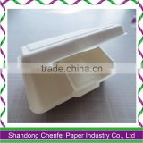 Sugarcane pulp compostable disposable food storage containers