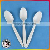 Compostable Corn Starch Flatware Plastic Spoon                                                                         Quality Choice