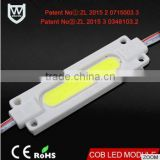 High Quality emitting warm White color High Power Led Module with ce rohs cob injection molding led module for led strip light