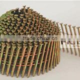 2.1MM Coil Nail/ Conical/ Ring/Blunt/Galvanized/ copper wire