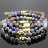 KJL-ST0001new arrivaling Nature 8mm Blue King stone Energy Stone Beads Bracelet silver&Gold Crown lion head Charm Buddha head Br