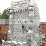 Amusement Park Inflatable Avalanche Climb China Supplier