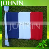 Promotion indoor/outdoor polyester 14*21cm France bunting string flag