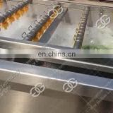 Professional Food Standard Fruit Brush Washing Machine Bubble Washer Vegetable Washing Drying Processing Line