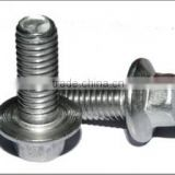 OEM Hex Washer Head Self Drilling Screw Carton Steel Screw Drilling Screw