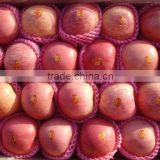 Red Color Fuji apple Fresh Style fruits fresh fuji apple fruit for sale Fuji apple exporter in China