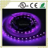 UV Color 60led/M 2835  LED Tape Light