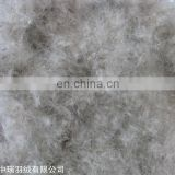 Wholesale market agents raw material 10% grey duck down