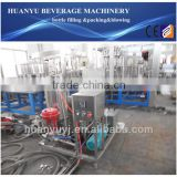 Glass Bottle Beer Packaging Machine/Line