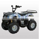 New design 110cc atv with LIFAN engine