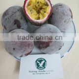IQF FROZEN PASSION FRUITS - HIGH QUALITY - BEST PRICE FROM VIETNAM