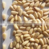 Jilin Painuo HSB Big Korean Pine Nut Kernels 100g/600pellets Chang Bai Mountain Pine Nut Kernels OEM