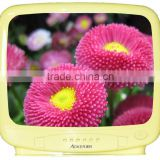 14 inch color CRT TV SKD 1