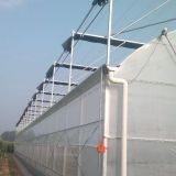 Multi span film covering agricultural greenhouse cheapest greenhouse