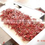 Tunnel Microwave chili/red chili powder drier and sterilizer