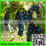 high quality bop stretch bird catch net,plastic anti bird net also used for plant support netting