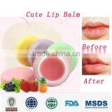NEW top selling macaron shape scented lovely cute lip balm / name brand animal shape chapstick