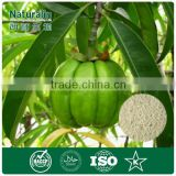 High quality Garcinia cambogia extract private label service supplied by GMP manufacturer in China
