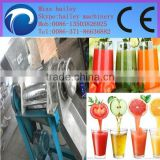 high-ranked and professional commercial carrot juicer machine