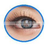 Inquiry about vassen color contact lenses manufactured in korea by vassen