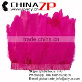 Head Dog CHINAZP Factory Bulk Sale Wonderful Quality Goose Trim Dyed Hot Pink Feathers Satinettes Trimming