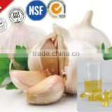 Factory wholesale garlic essential oil extraction bulk supply
