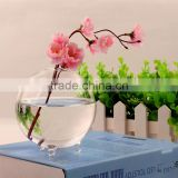 Ball shaped hydroponics container round transparent glass vase for plant