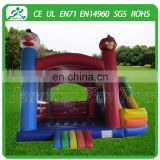 Colorful inflatable bouncer slide castle with rage bird themed park for kids