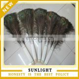 wholesale 25-30cm 100% natural peacock feather peacock plume