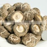 Dried White Flower Mushroom