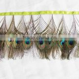Peacock feather trim for masquerade,peacock feather