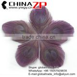 CHINAZP Bulk Sale Selected Prime Quality Beautiful Colored Purple Trimmed Peacock Feathers Eyes for Sale