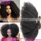 Wholesale afro hair hot sale afro kinky weave 8A grade cheap afro hair extensions wholesale virgin brazilian afro kinky hair
