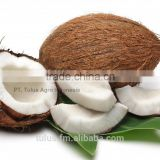 HIGH QUALITY FROZEN COCONUT CHUNKS