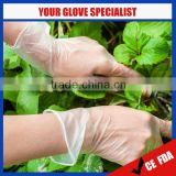 2016 New Food Grade & Medical Grade vinyl gloves plastic gloves food grade plastic gloves